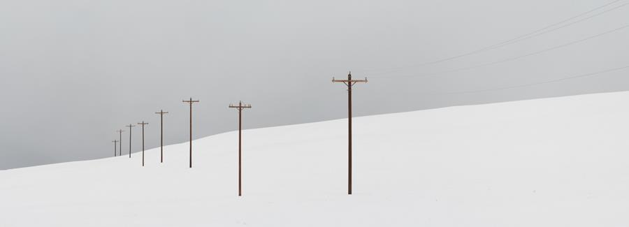Telephone poles and snow